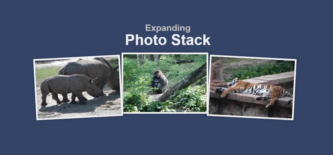 photo-stock