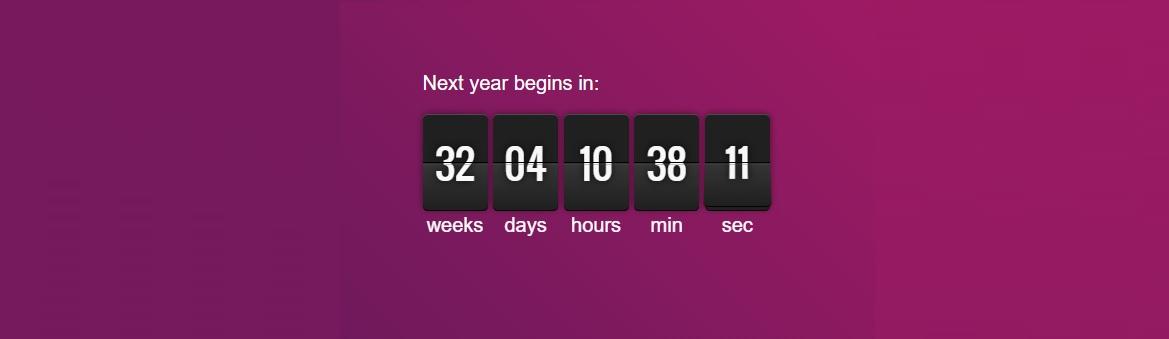 next-year-countdown