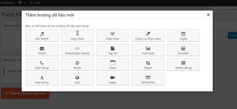 Hướng dẫn custom field trong wordpress