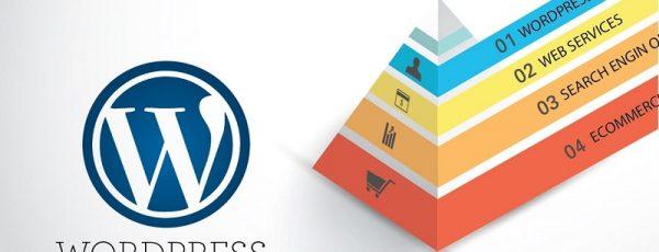 Hướng dẫn custom taxonomy trong wordpress sử dụng plugin toolset types