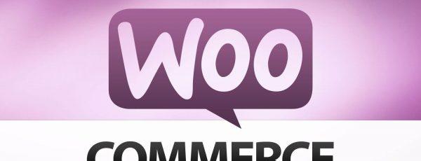 Những đoạn code hay dùng trong lập trình themewoocommecre wordpress