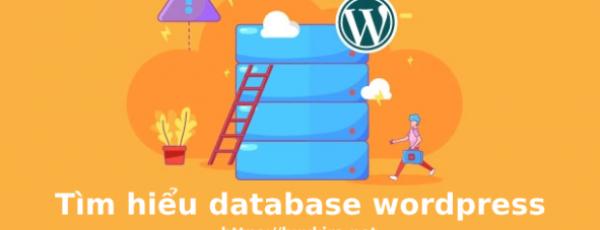 Đâm, đục, phá database wordpress xem có gì vui ?
