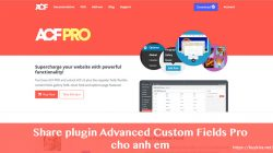 Share plugin Advanced Custom Fields Pro cập nhật thường xuyên