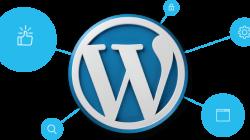 Hướng dẫn cách chọn hosting cho WordPress